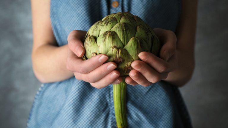 Artyčok. Kdysi lahůdková zelenina oblíbená ve středověku se nyní navrací na naše talíře