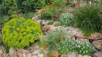 Ozdobné trávy se hodí do každé zahrady. Nevyžadují příliš péče a vypadají skvěle po celý rok