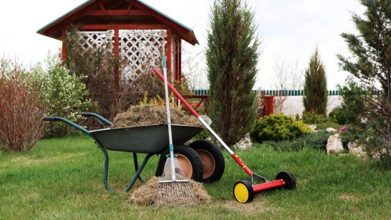 Vertikutace je zárukou krásného trávníku. Provádí se na podzim i na jaře