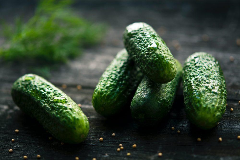 Pěstujete na zahradě okurky? Dopřejte jim kopřivové hnojivo